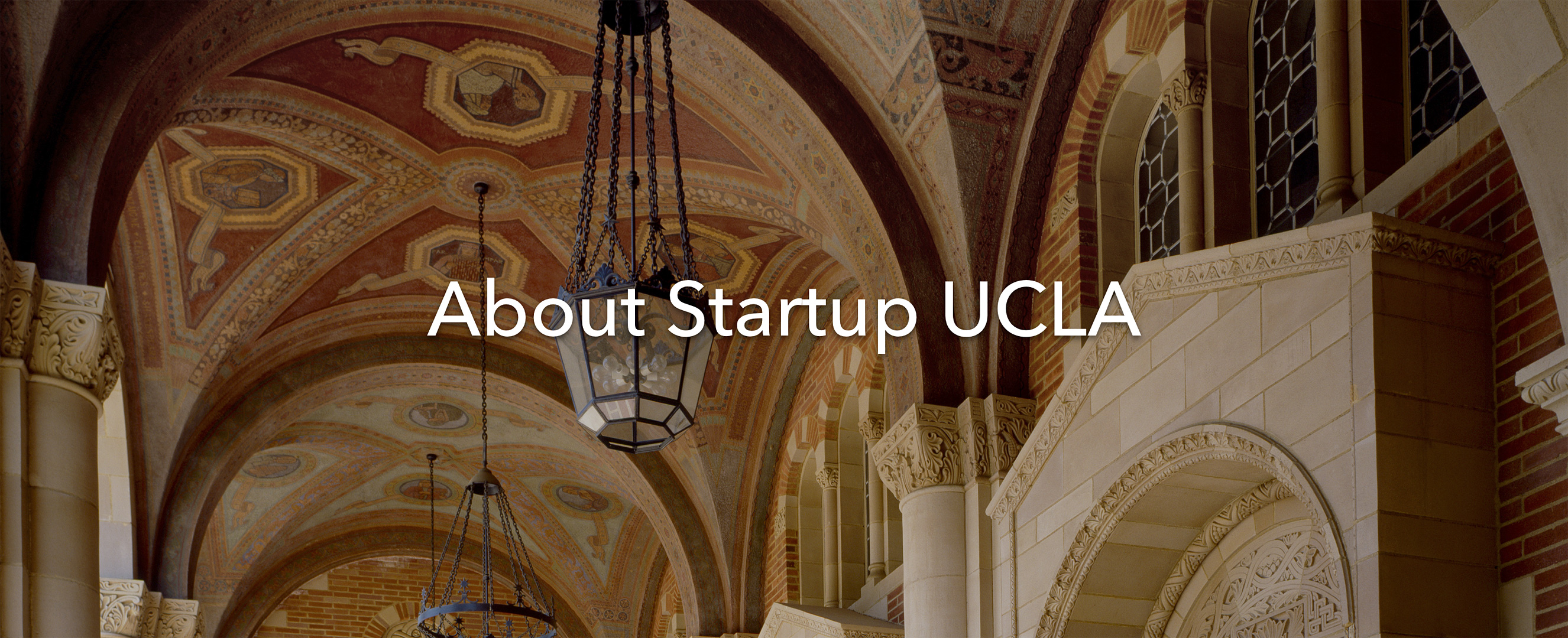 About Startup UCLA